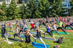 Free Yoga at Summer at SAM